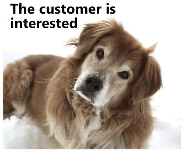 the-customer-is-interested