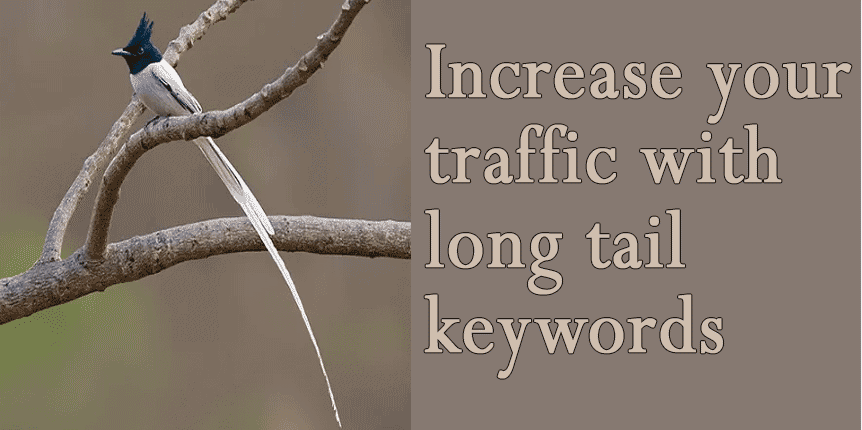 Increase traffic with long tail keywords