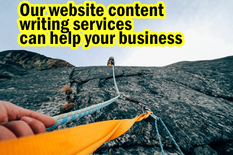 Our website content writing services can help your business