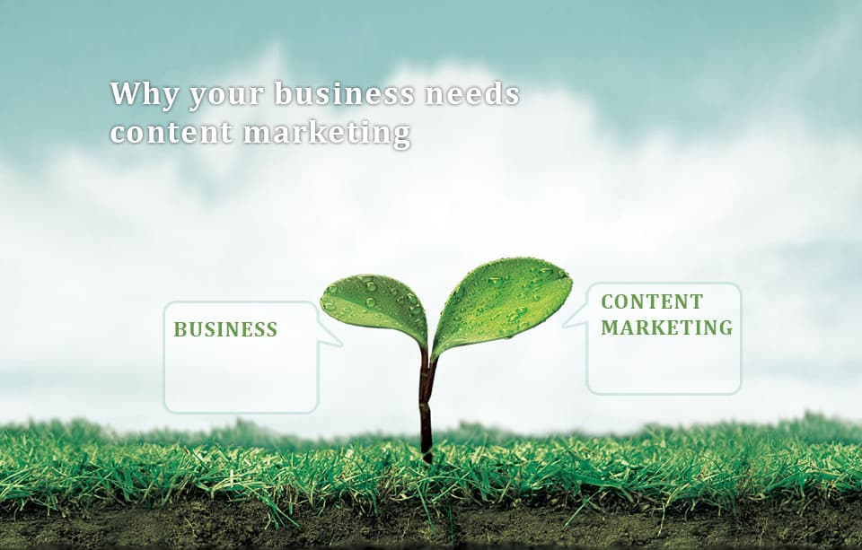 Business needs content