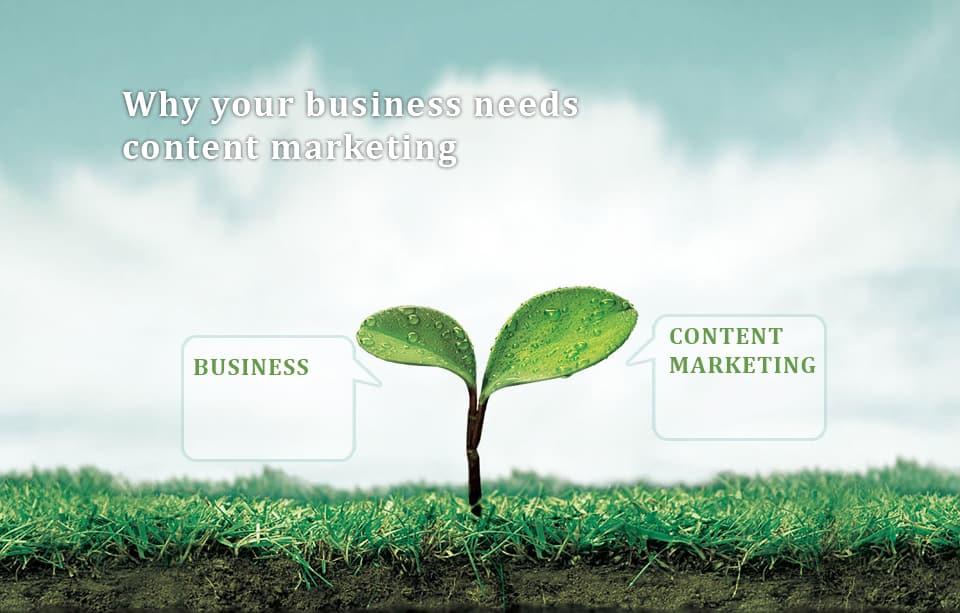 Business needs content