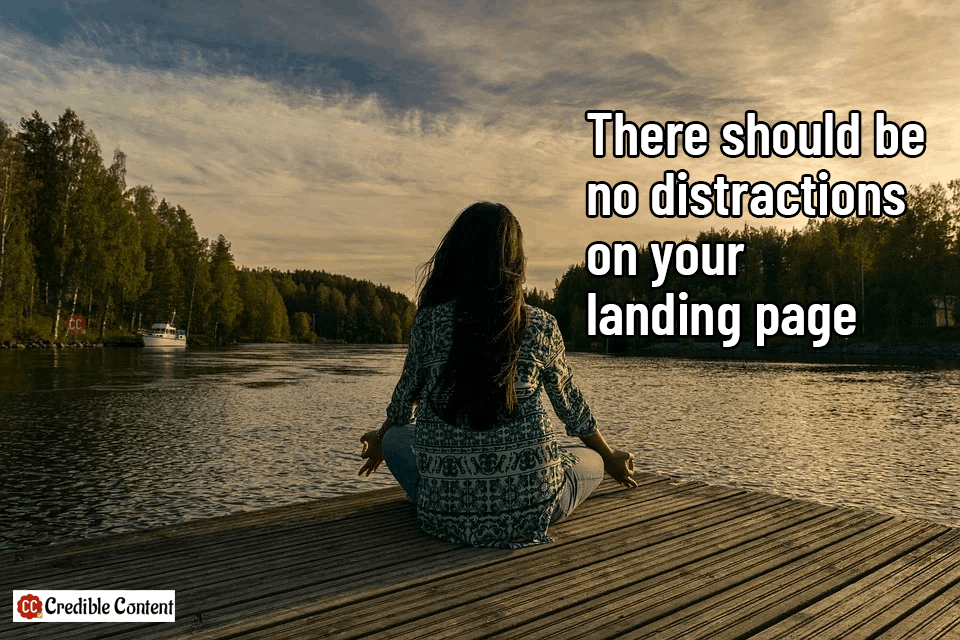 There should be no distractions in your landing page copywriting
